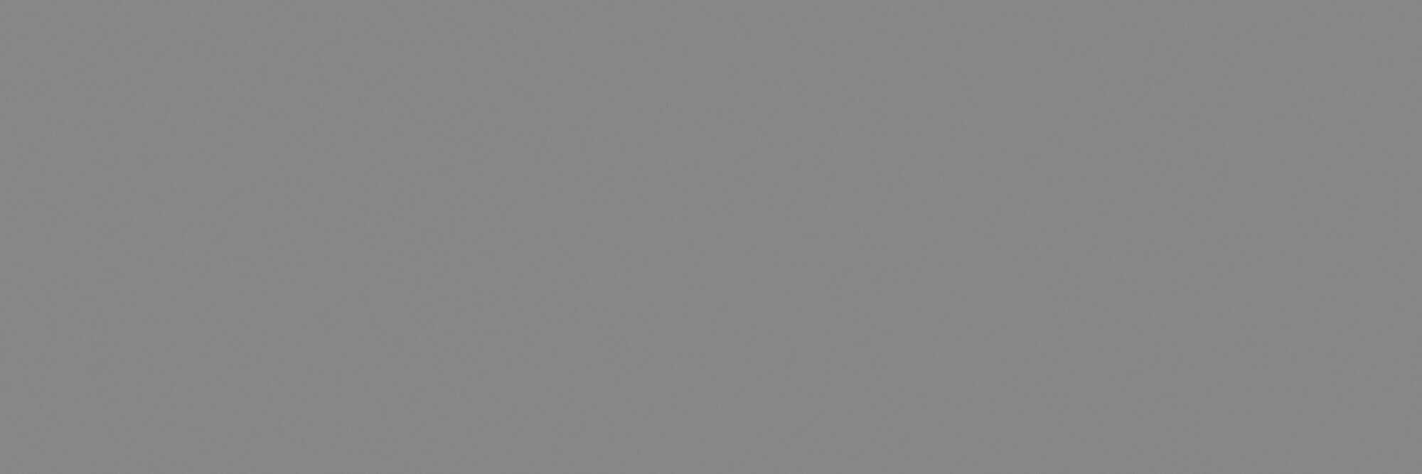 78ba31e coverlam basic gris 100×300 rgb