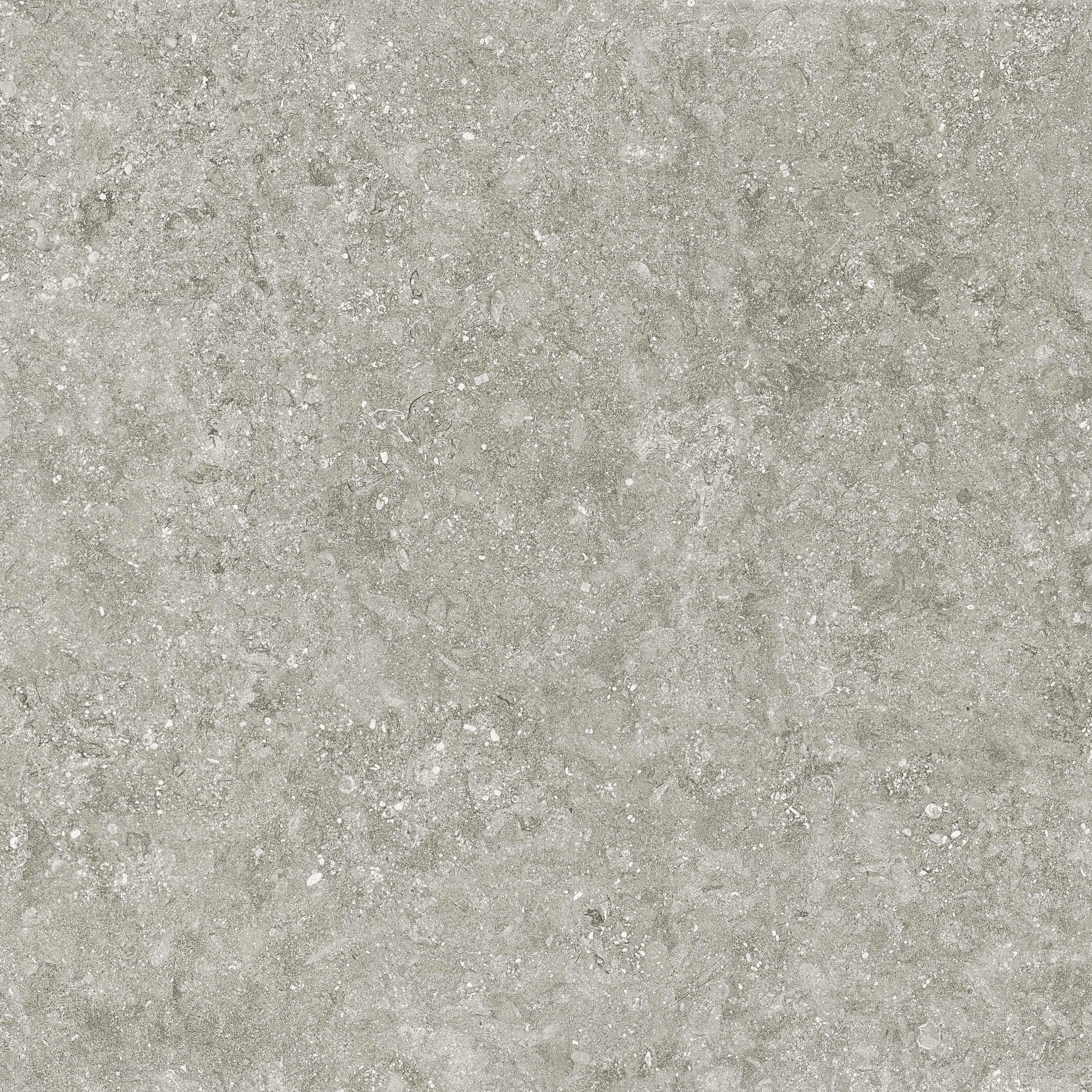 78bs33e bluestone gris e1 100×100 3 rgb