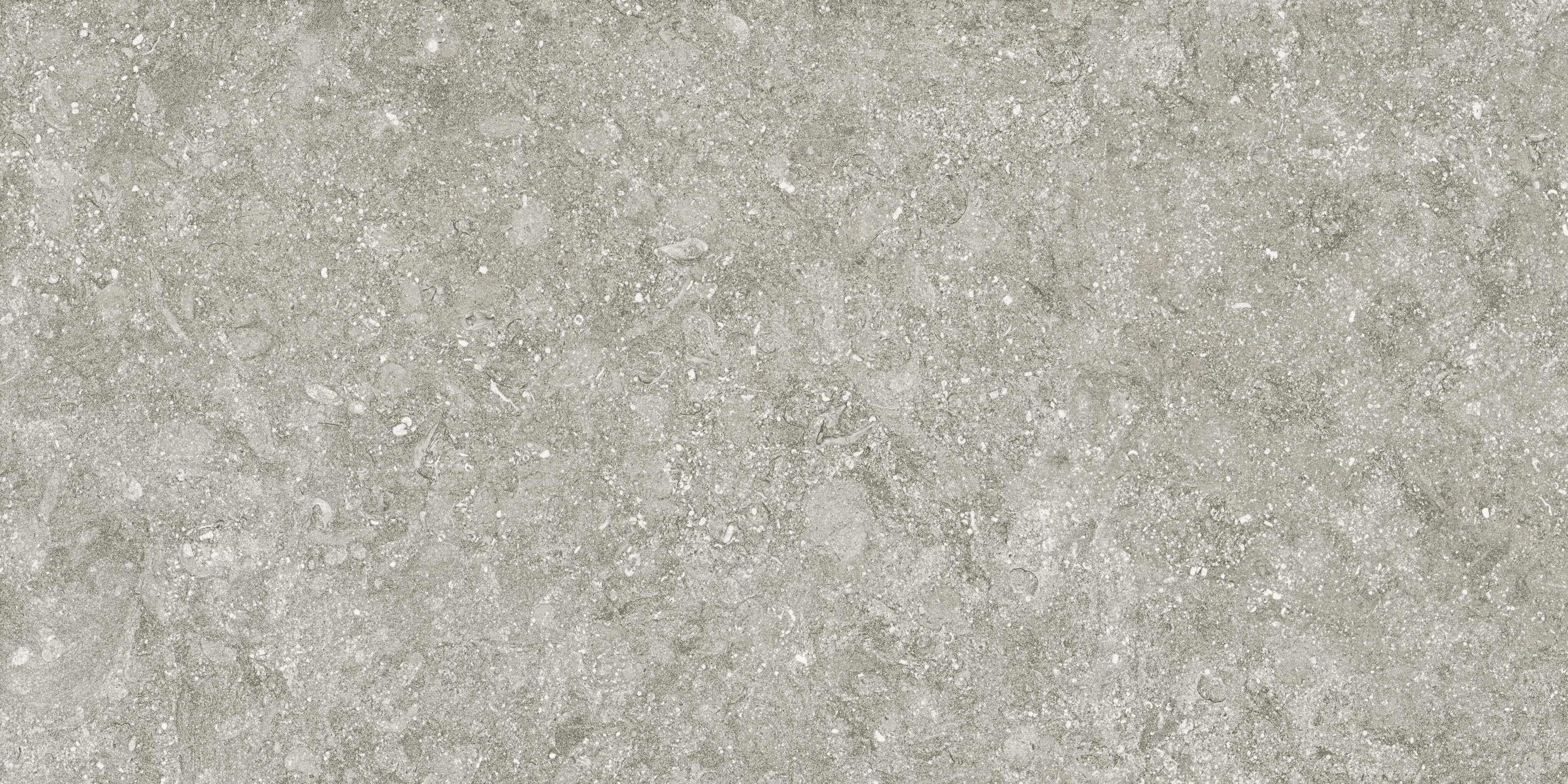 78bs34e bluestone gris e2 50×100 1 rgb