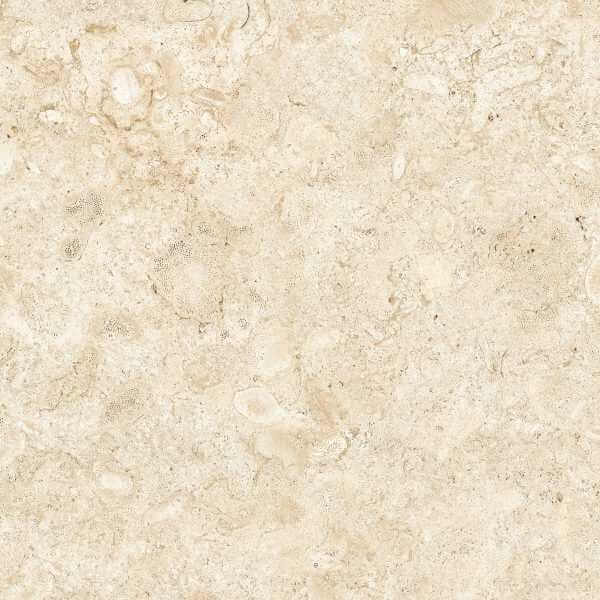 80rb43e coralina bco e1 1200×1200 rgb